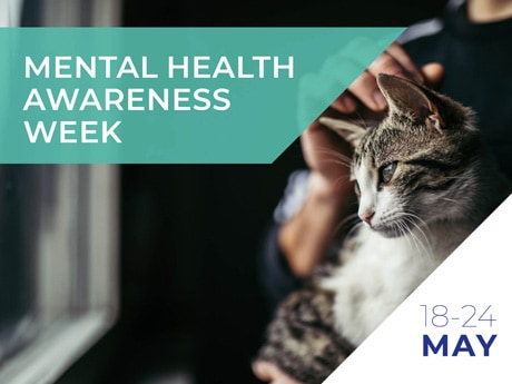 How owning a pet can be good for your mental health